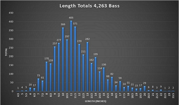 20 Year Bass Length