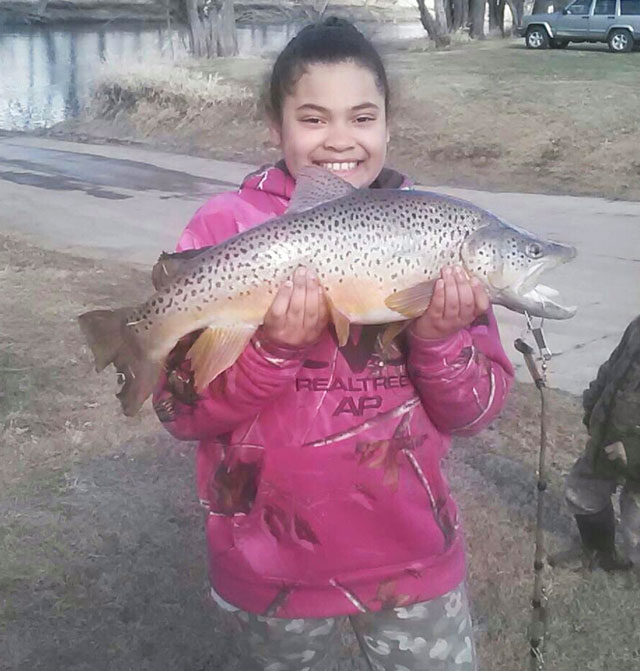 girl, 8, caught this 7 pound, 6 ounce brown trout out of the Pecatonica River on 8-pound test line
