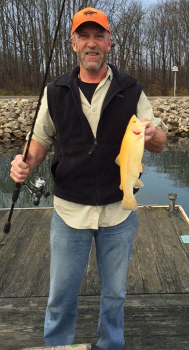 "Carl Dixon of Edwardsville caught this golden ""palomino trout"" at Beaver Dam State Park on Dec. 12."