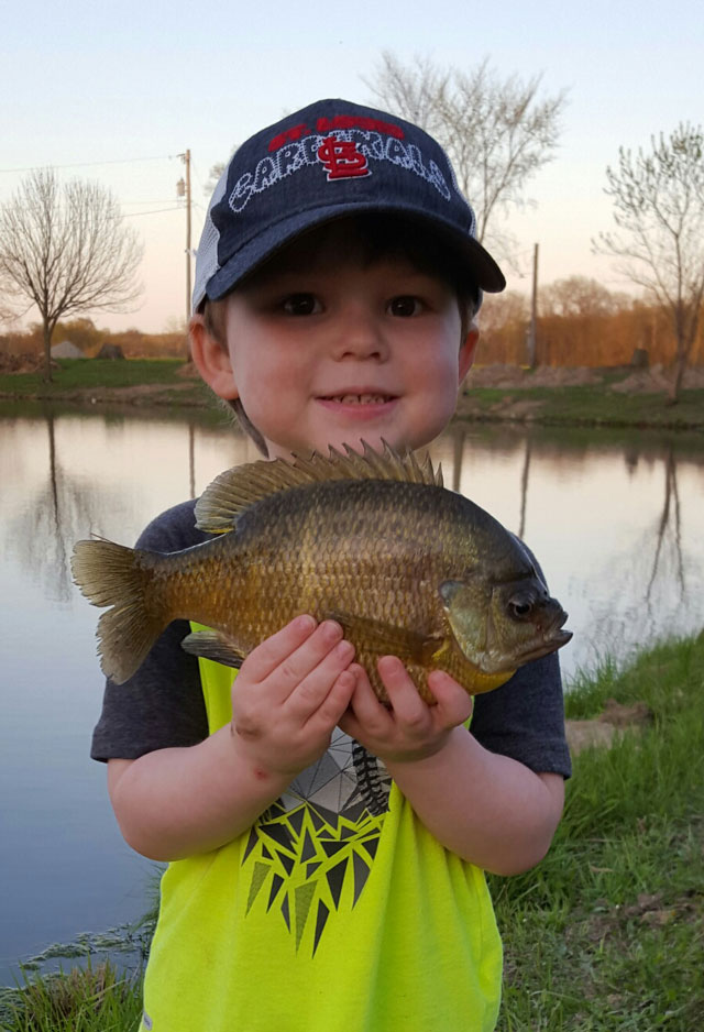 Drake Elam, 3, of Collinsville was happy to catch this farm pond fish on a family outing.