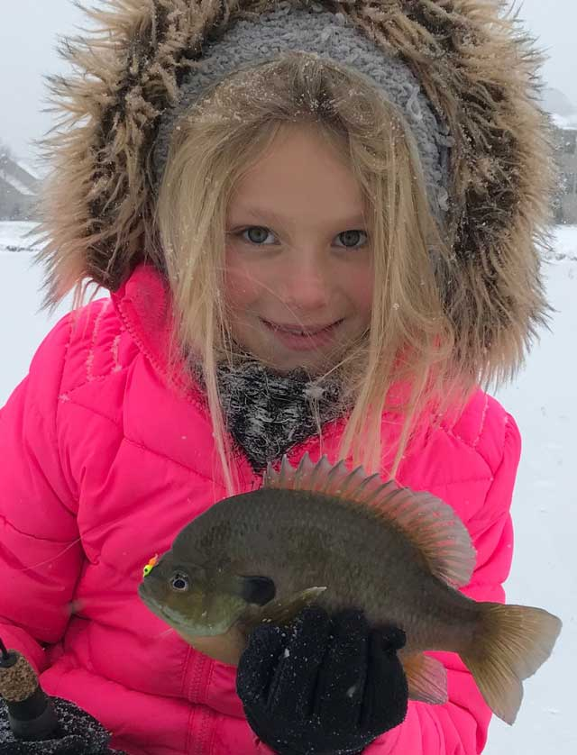 bluegill ice fishing illinois