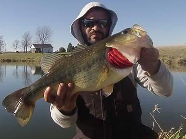 How warm was this fall? A Monmouth-area farm pond produced this giant bass in late November.