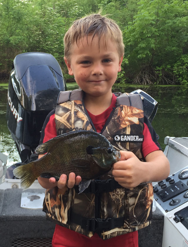 Jack-Bogatitus-of-Dalzell-holds-a-bluegill-from-Lake-Waubesa-caught-Memorial-Day-weekend.