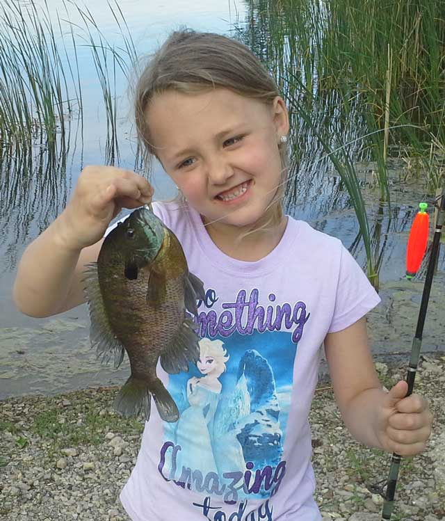 Jersi Boitnott caught this  bluegill during a spring fishing trip in central Illinois.