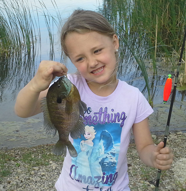 Jersi Boitnott caught this bluegill this spring while fishing with her grandfather, Rick Washam.