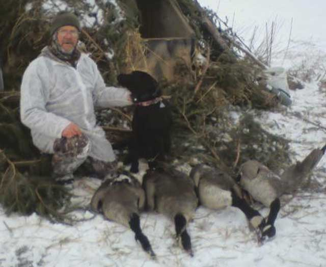 knox county goose hunting