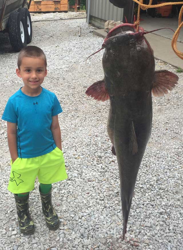 Kallen was fishing with Porter Construction of Havana when they caught this fish, a 40-pound flathead.