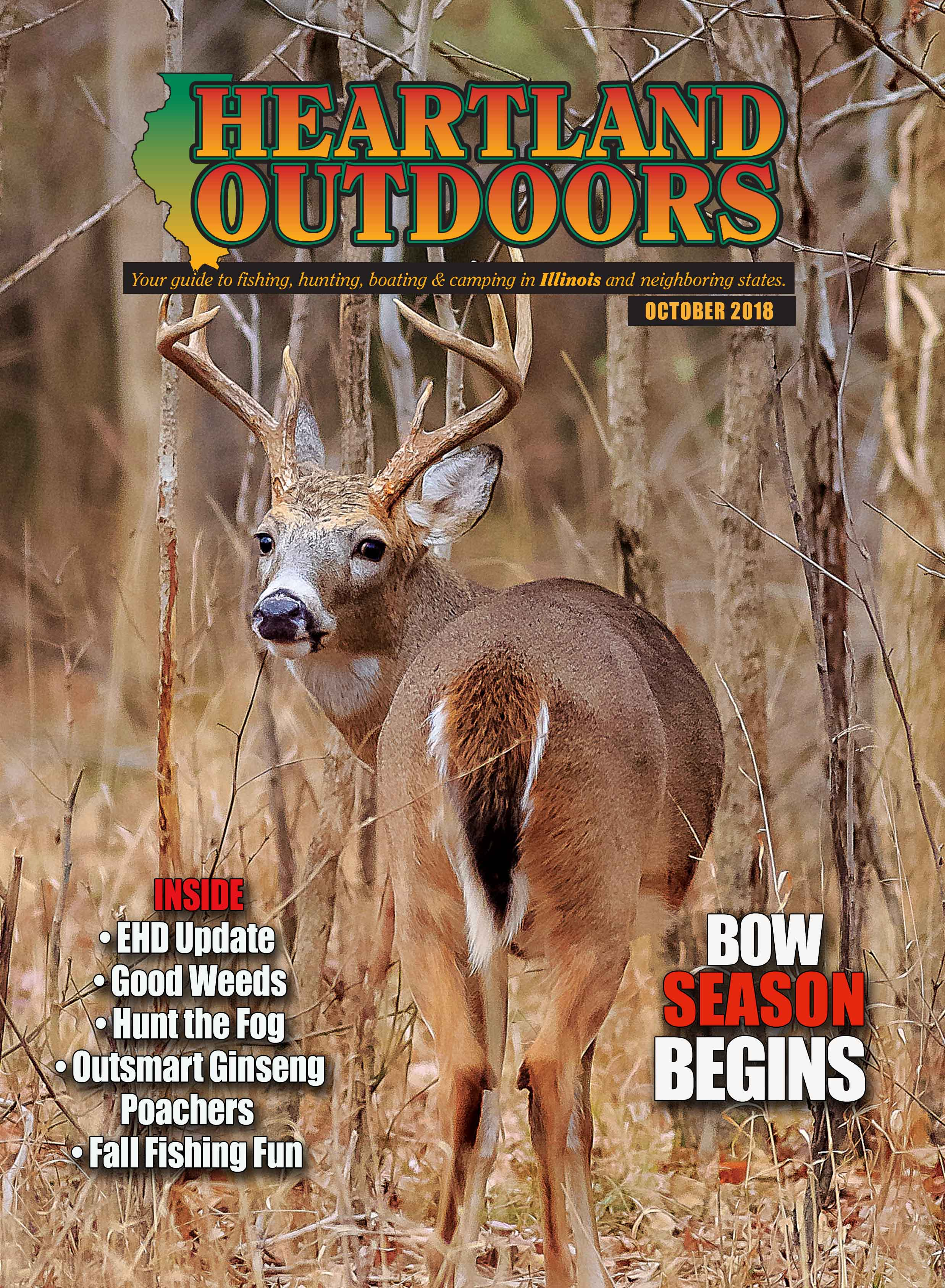 deer illinois cover
