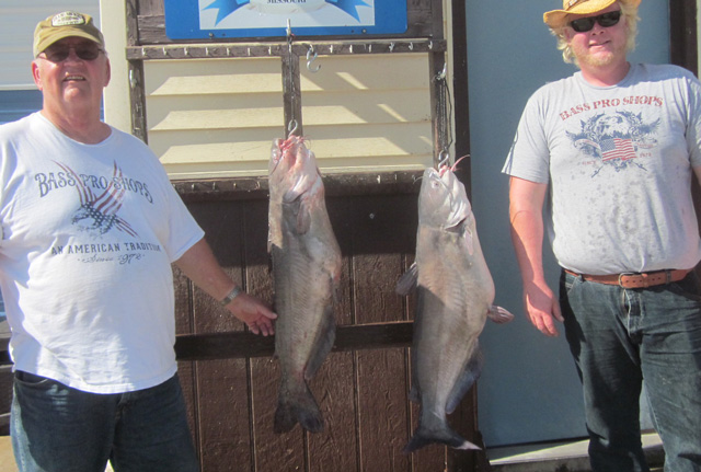 Patrick O'Plennis Sr. and Patrick Jr. pose with the 29- and 23.5-pound blue catfish they caught on Mark Twain Lake on Oct. 16 while fishing with Asian carp. Photo courtesy of SOUTH FORK RESORT.