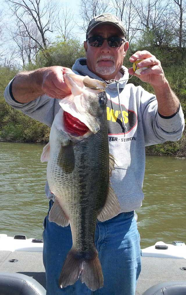 Ron Boyer of Trivoli caught this 7.4-pound bass in mid-April out of a strip mine lake west of Canton