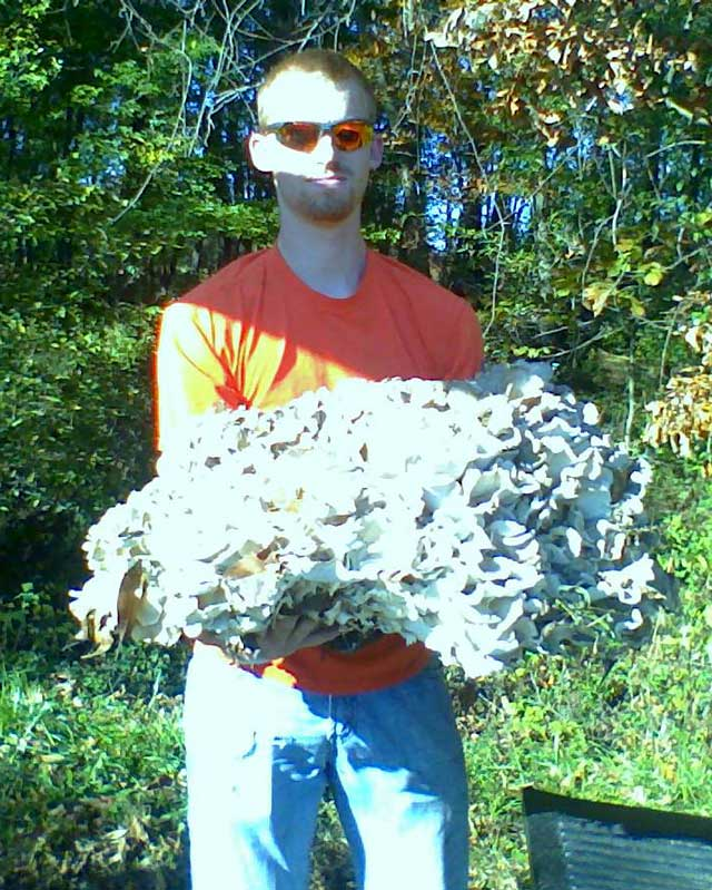 big hen of woods 48 pounds