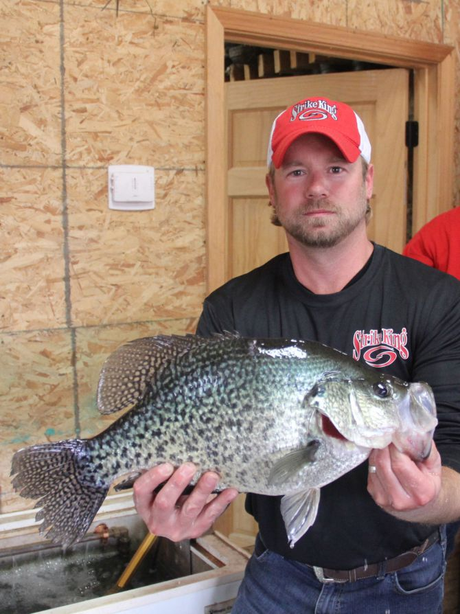 illinois record crappie