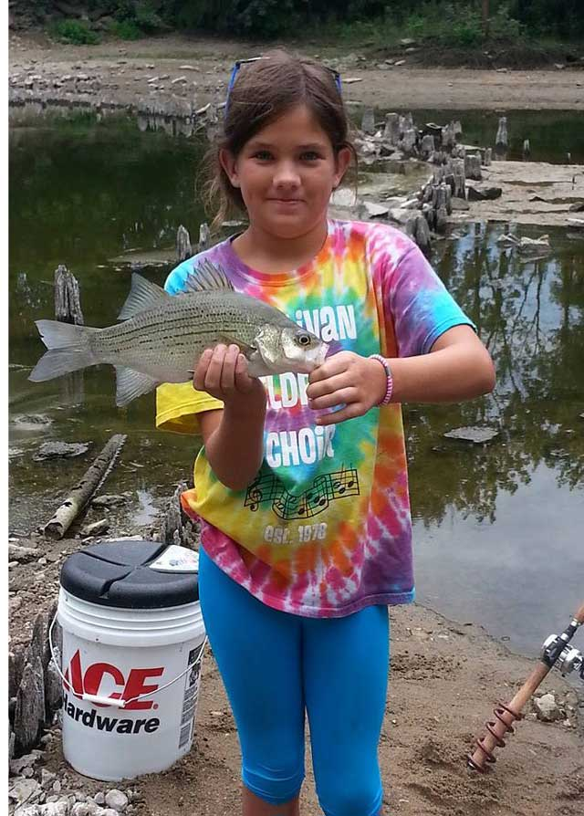 Girl caught a White Bass during Aug 2014, caught below Decatur, IL spillway.