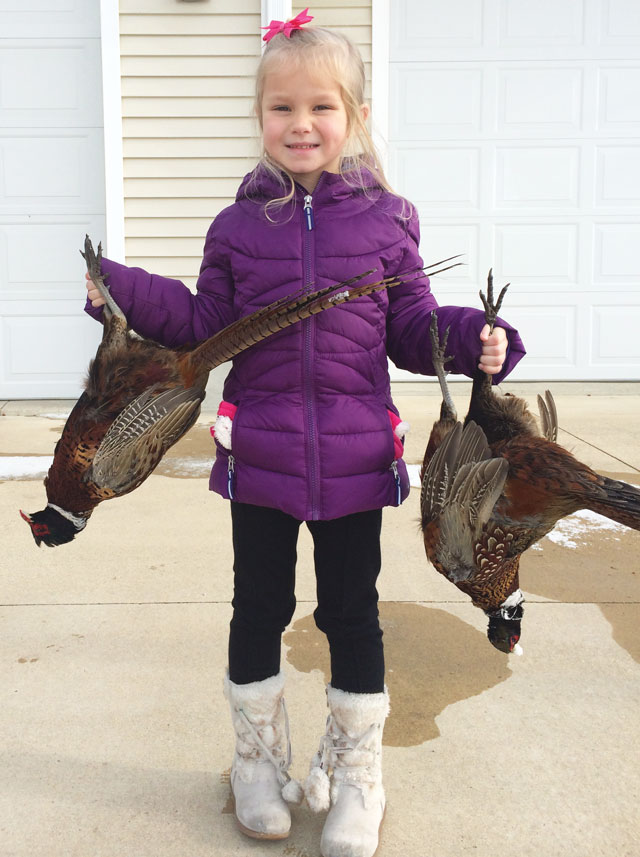 Gabby Wisher pheasants