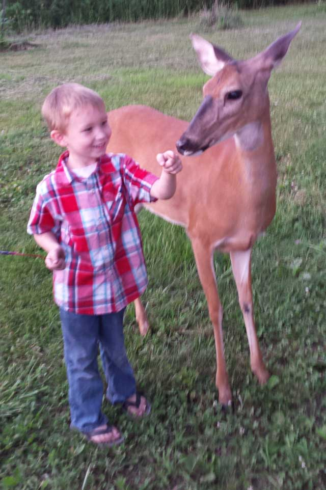 kid with doe