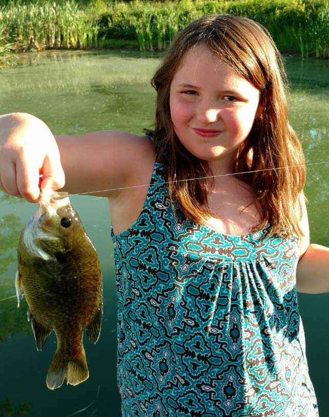 Madilynn Hardesty caught this bluegill on a wax worm while fishing in a Fulton country farm pond on June 4th.