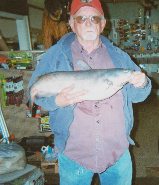 Don Stanley Catfish