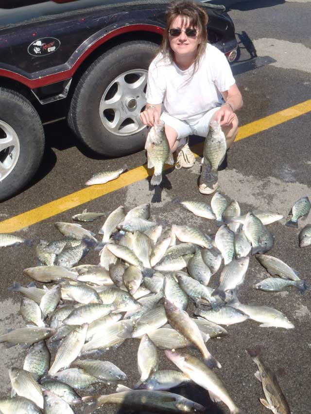 Jessie Johnson-Sperry posing with a bunch of white bass, walleye and crappie.