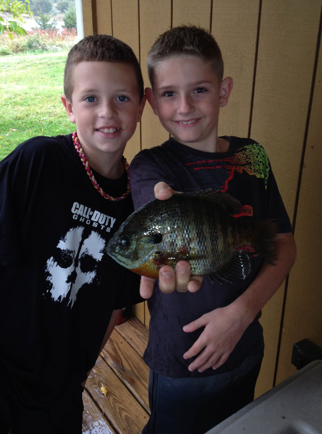 A boy goes to Peoria and catches a bluegill with his buddy  from a lake in Fulton County